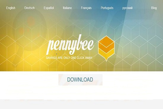 pennybee-removal