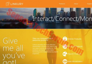 Linkury website