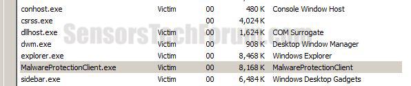 Malware-protection-live-process