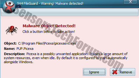 picexa malware object detected
