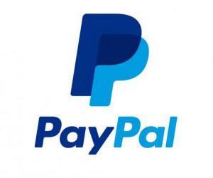 paypal-bug-stf