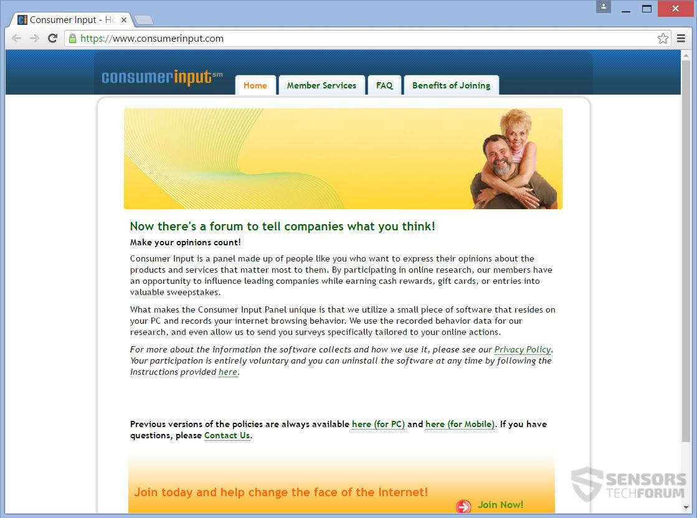 STF-consumerinput-com-consumer-input-com-main-page
