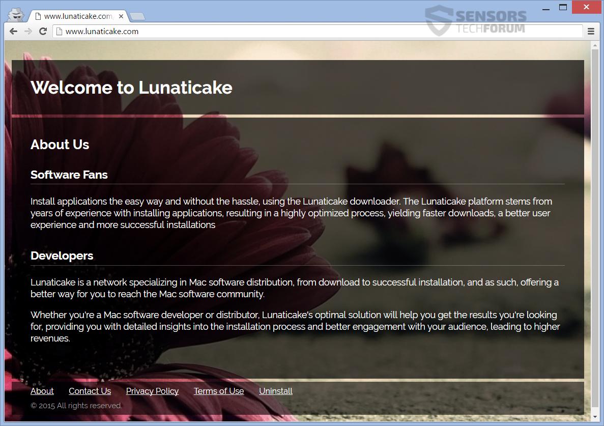 STF-lunaticake-com-main-page-browser-hijacker