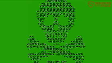 STF-mischa-ransomware-boot-screen-green-acsi-skull