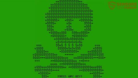 STF-mischa-ransomware-boot-screen-green-acsi-skull