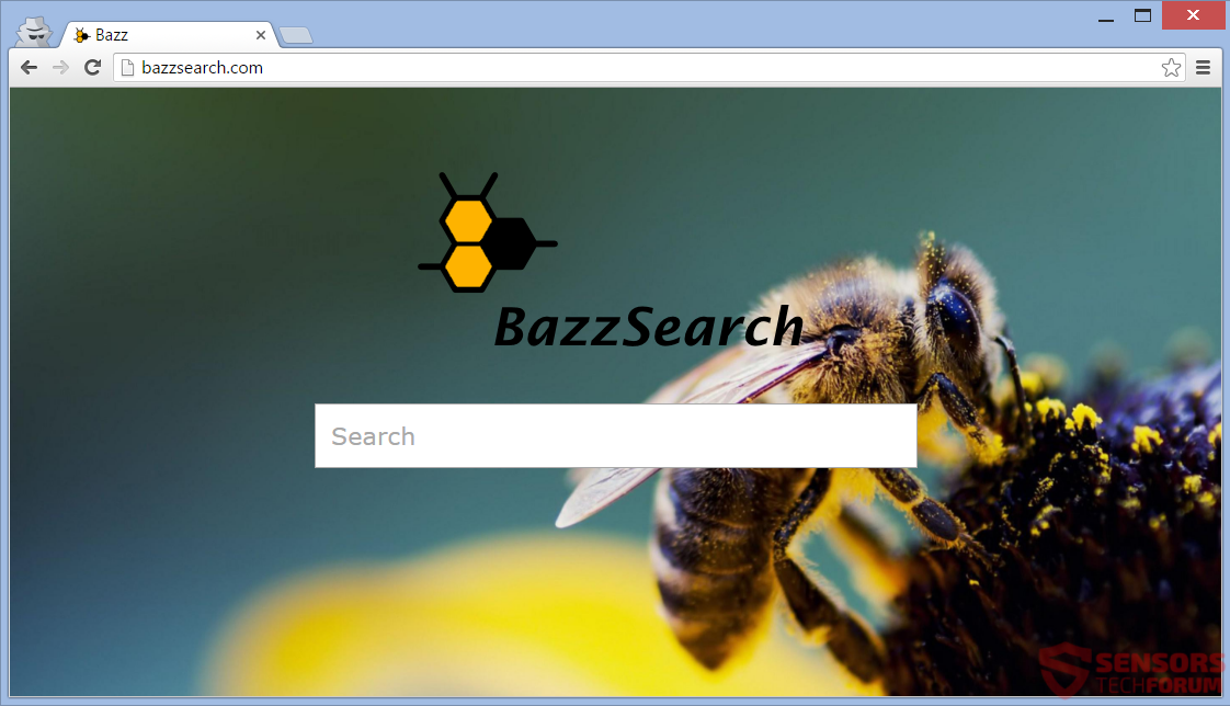 STF-bazzsearch-bazz-search-main-site-page