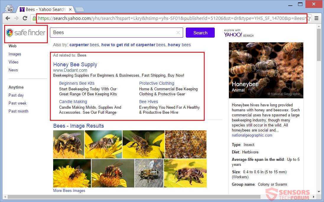 STF-bazzsearch-bazz-search-site-search-results