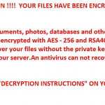 STF-R980-ransomware-project-ransom-note-message