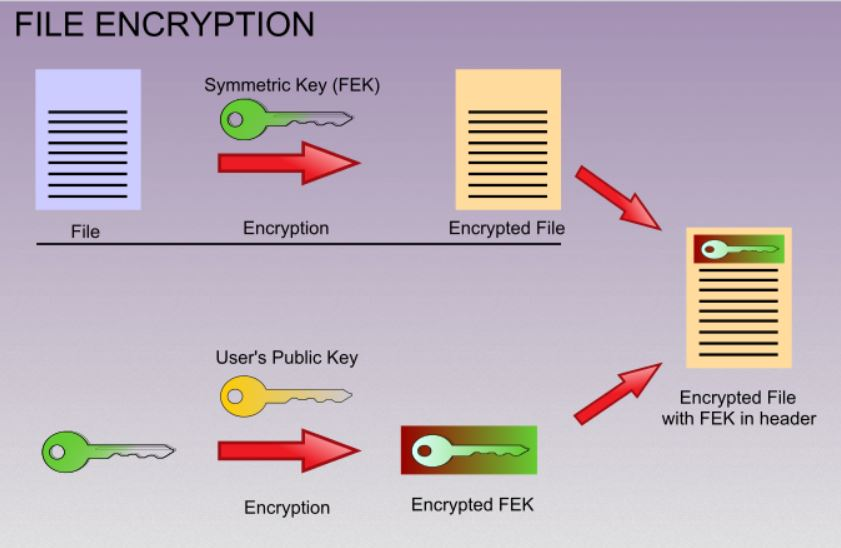 And restore aes and rsa encrypted files sensorstechforum com