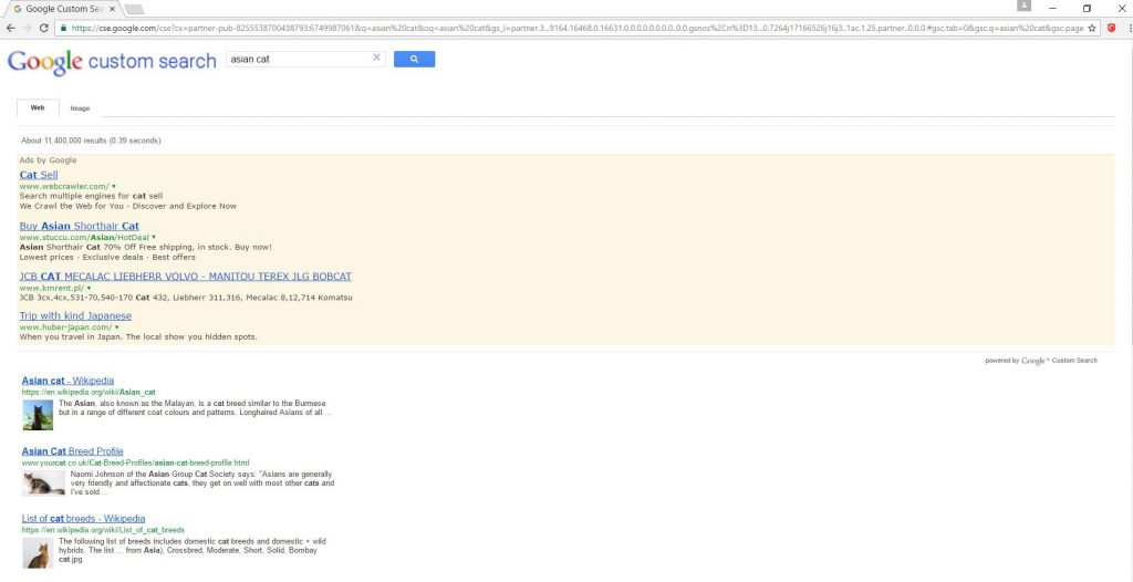 ad-supported-search-results