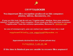 cryptolocker-wallpaper-malicious-sensorstechforum-com-new-en_files-txt