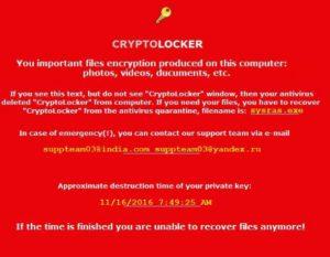 cryptolocker-wallpaper-malicious-sensorstechforum-com-new-en_files-txt