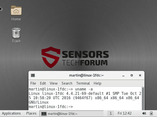 immagine screenshot SUSE Linux Enterprise Linux Server