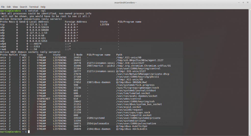 Using the netstat Linux command image