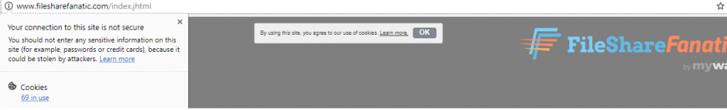 FileShareFanatic tracking cookies image
