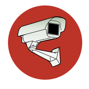 IP Cameras image