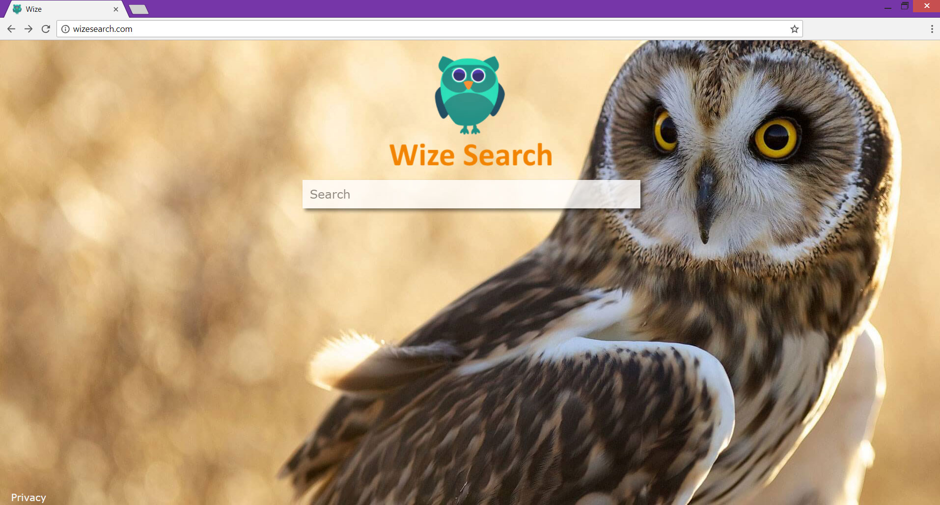 Wizesearch.com redirect modifies search results