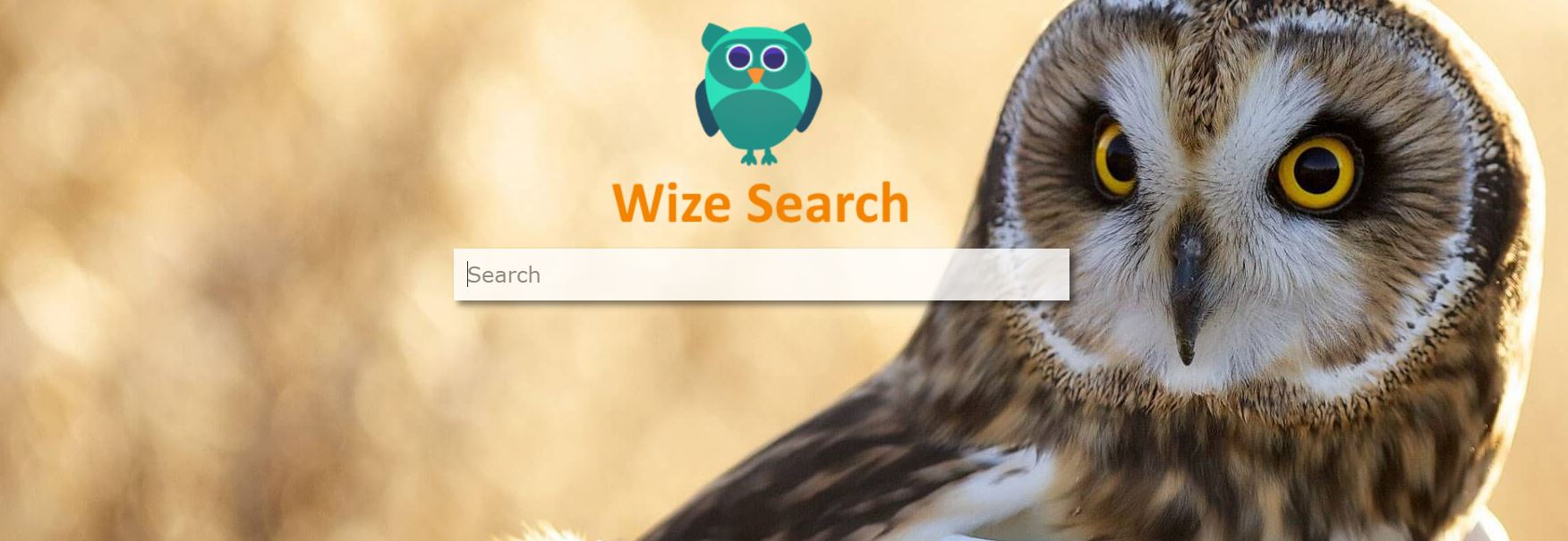 how to remove Wizesearch.com redirect