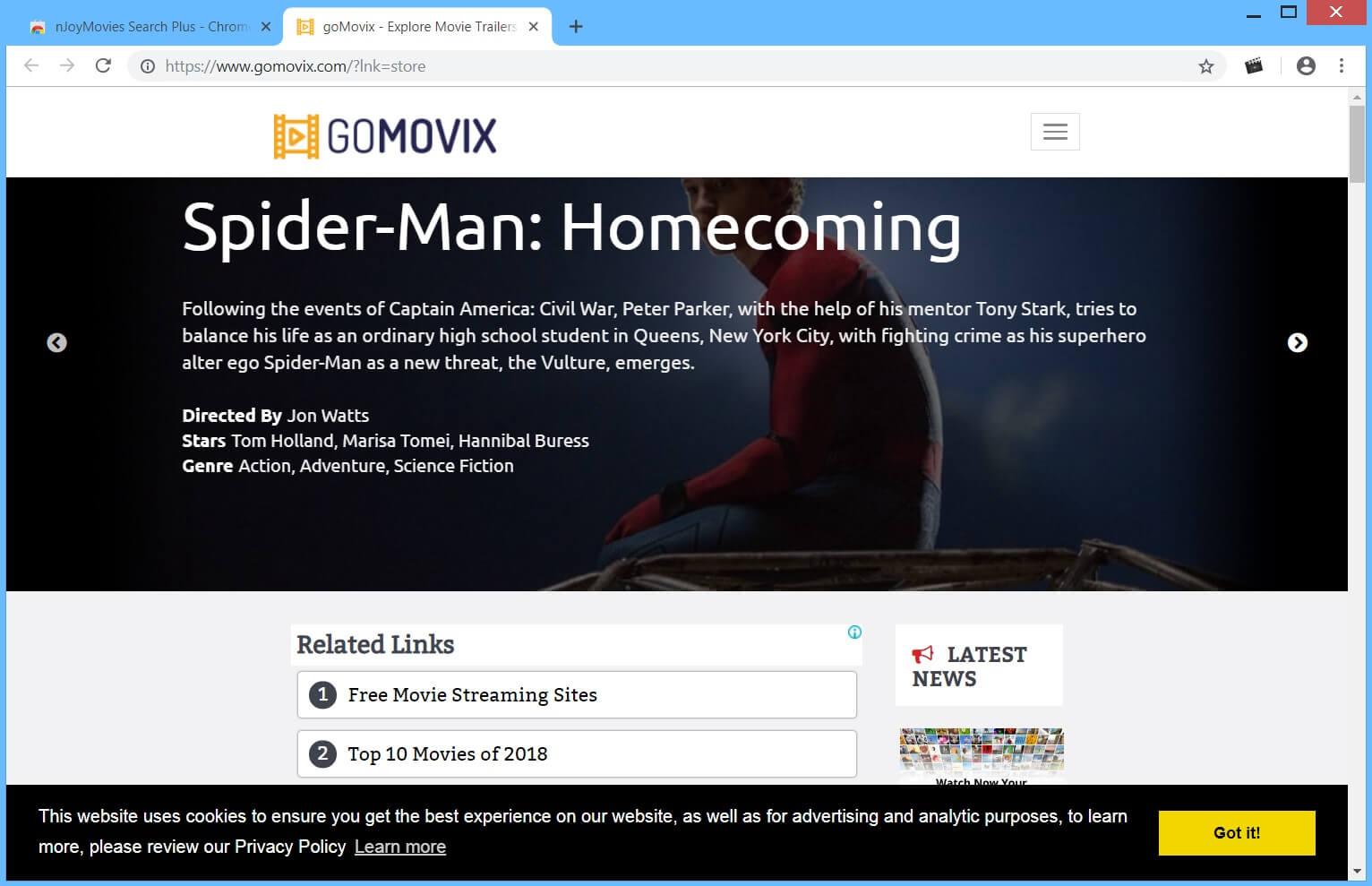 nJoyMovies search plus hijacker main page