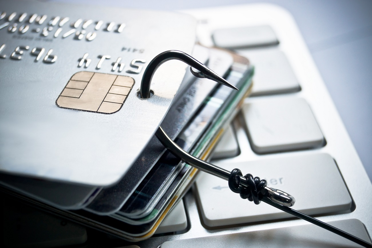 Fake Google Domains Used in Credit Card Skimming Campaign