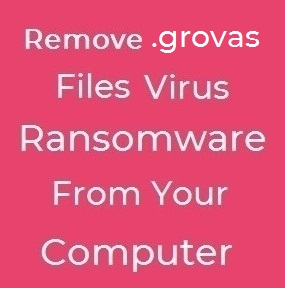 grovas virus remove