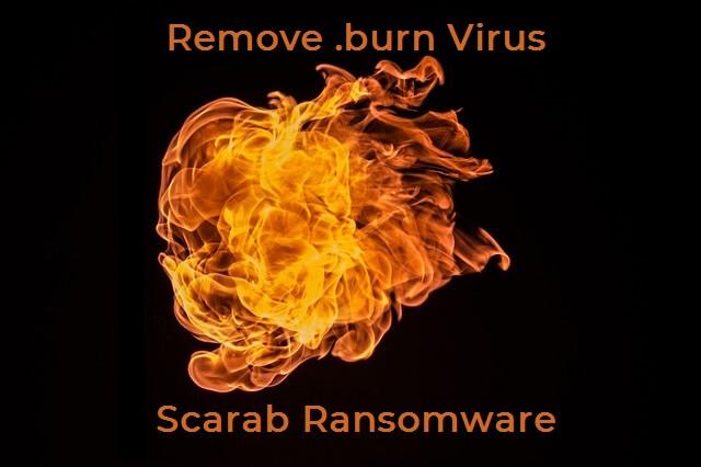 burn scarab ransomware