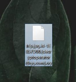 trip-jpg-file-encrypted-dharma-cry-ransomware-virus-sensorstechforum