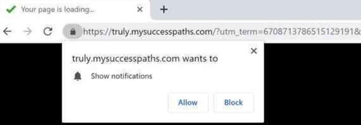 stf-mysuccesspaths-com