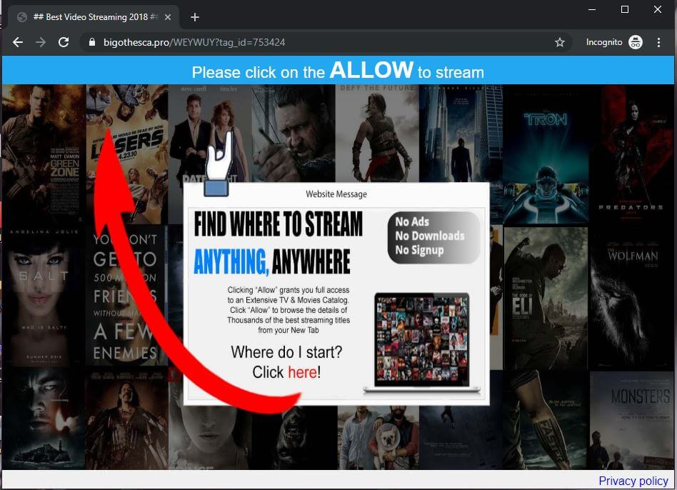 remove Bigothesca.pro pop-up ads