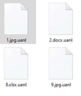 UANL-virus-archivo-extensión-sensorstechforum