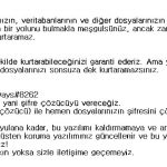 stf-TMTEAM-virus-file-turkish-ransomware