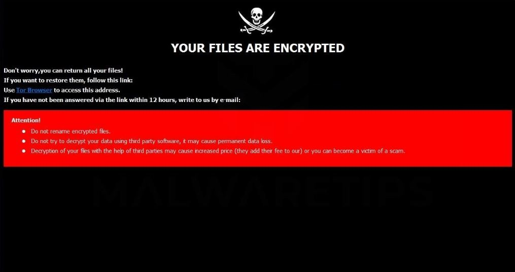 2NEW ransomware virus ransom message