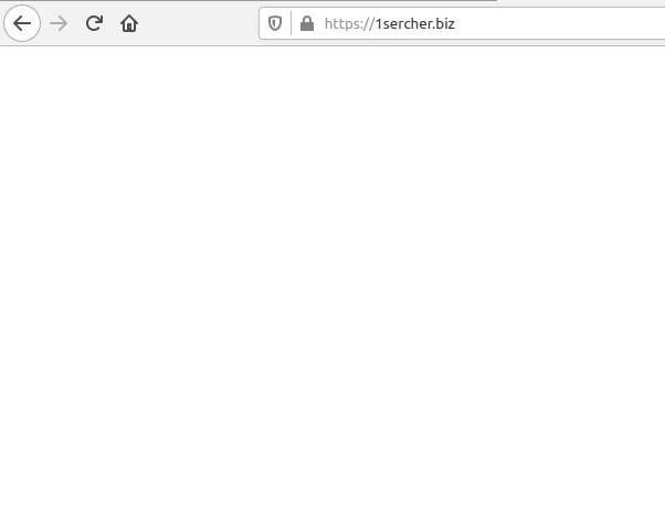 1sercher.biz redirect image
