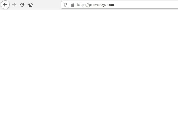 promodayz.com redirect image