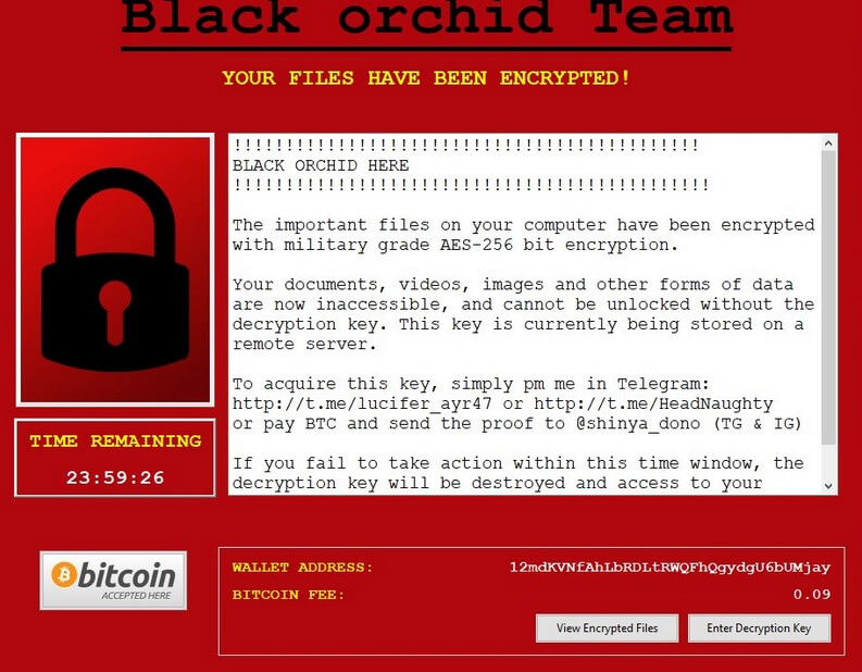 stf-shinya-virus-file-black-orchid-ransomware