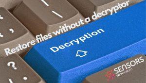 Restore Files Gecodeerde door Ransomware (zonder Decryptor)