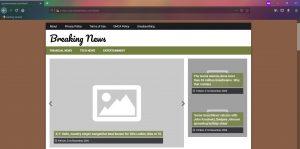 Yourwownewz.com Ads removal guide stf