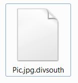 Virus Divsouth
