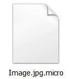 micro files