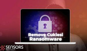 remove-Cukiesi-ransomware-virus-stf-guide