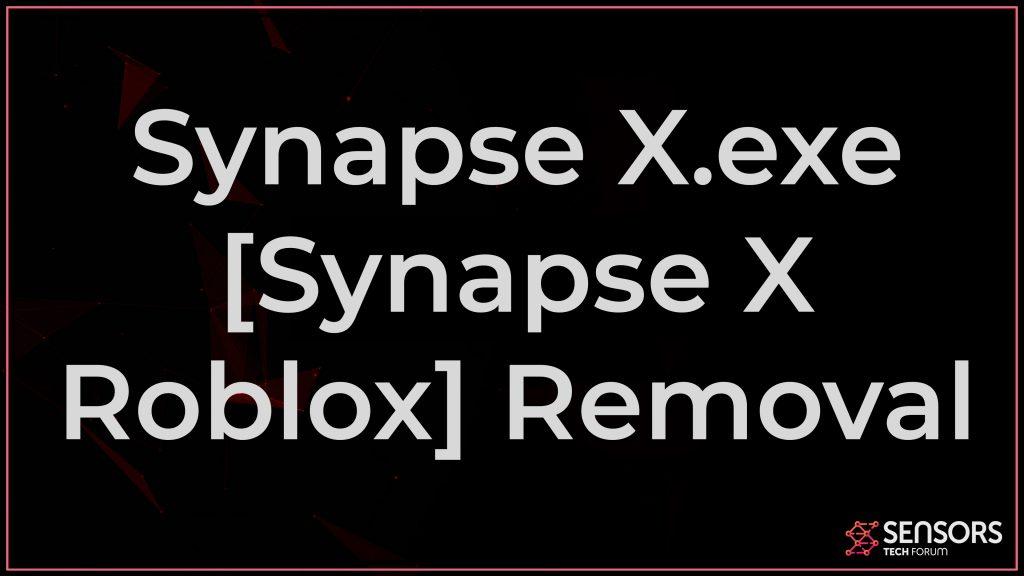 Synapse X.exe