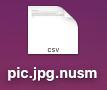 nusm files