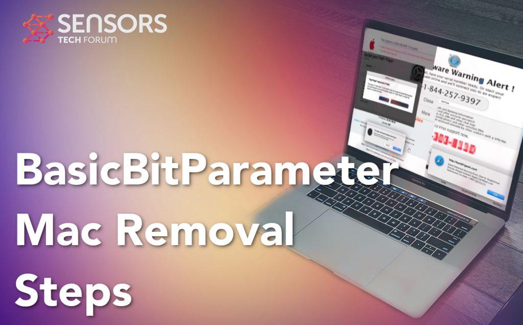 BasicBitParameter