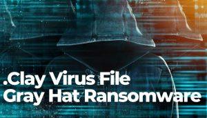 clay-virus-file-gray-hat-ransomware-sensorstechforum